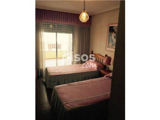 Apartamento en alquiler en calle ram n y cajal en - Alquiler de pisos en guardamar del segura particulares ...