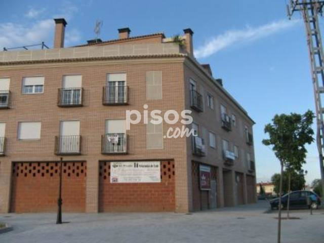 Alquiler de pisos de particulares en la comarca de la sagra for Pisos alquiler navalcarnero particulares