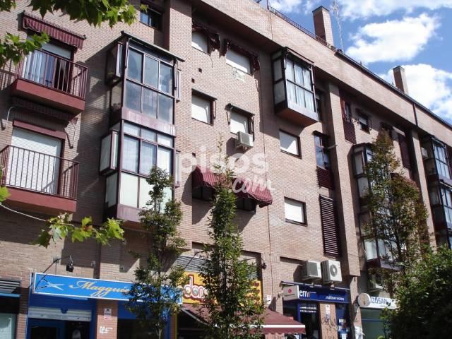 Alquiler de pisos de particulares en la provincia de madrid p gina 66 - Alquiler de pisos madrid particulares ...