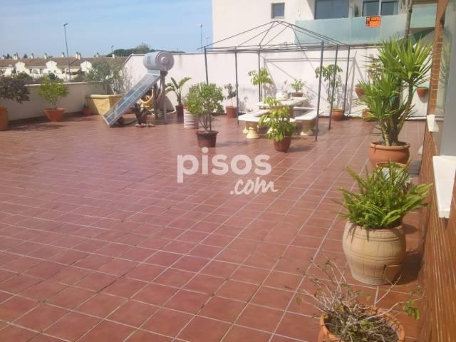 Alquiler de pisos de particulares en la comarca de campi a for Pisos de alquiler en jerez