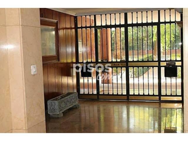 Alquiler de pisos de particulares en la ciudad de sevilla p gina 5 - Alquiler de pisos sevilla particulares ...