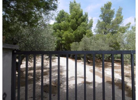 Chalet en alquiler en  Tarragona