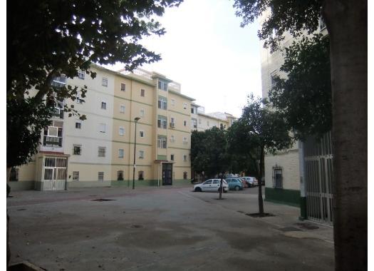 Piso en alquiler en sevilla capital el plantinar el juncal for Pisos en alquiler en sevilla capital particulares