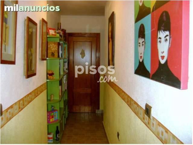 Alquiler de pisos de particulares en la ciudad de alcantarilla for Alquiler de casas en sevilla particulares