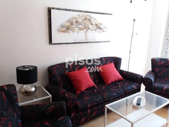 Alquiler de pisos de particulares en la ciudad de torrevieja - Pisos baratos en alquiler en bilbao solo particulares ...