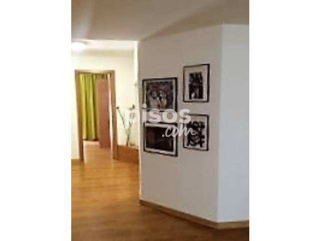 Alquiler de pisos de particulares en la provincia de las palmas p gina 8 - Duplex en ingenio ...