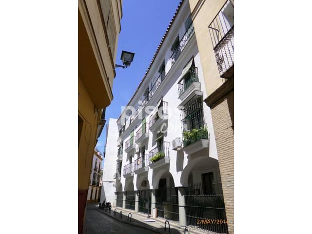 Alquiler de pisos de particulares en la comarca de rea metropolitana de sevilla p gina 18 - Alquiler de pisos en sevilla capital ...