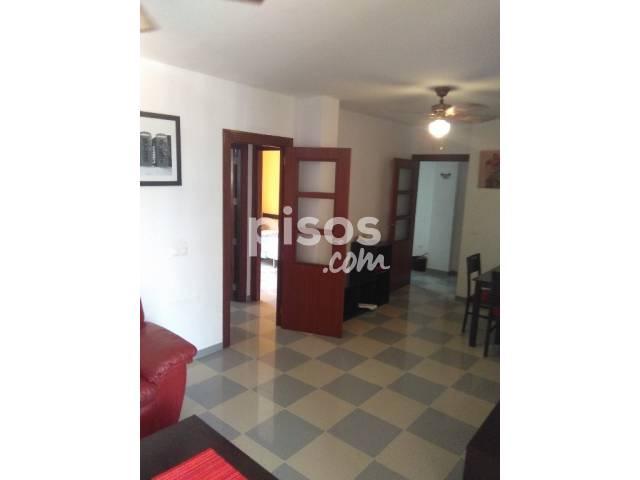 Alquiler de pisos de particulares en la ciudad de roquetas de mar - Pisos alquiler pinto particulares baratos ...