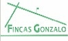 FINCAS GONZALO