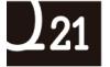 Q21 REAL ESTATE
