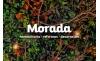 MORADA INMOBILIARIA