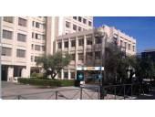 Oficina en alquiler en Calle Condesa de Venadito, nº 1, San Pascual (Distrito Ciudad Lineal. Madrid Capital) por 3.600 €/mes