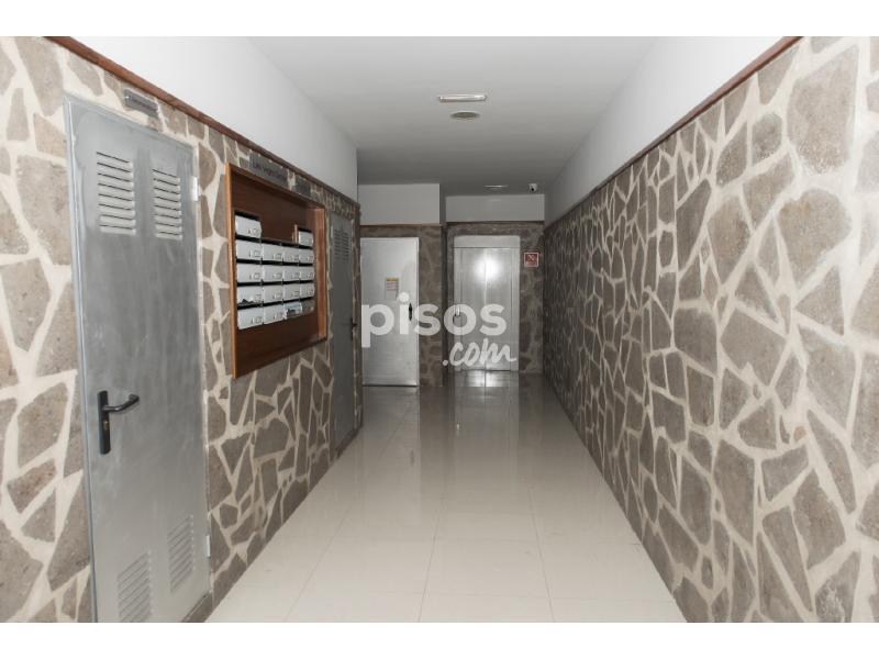 Piso en alquiler en avenida agust n millares carlo 2 en for Alquiler pisos por meses